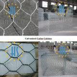 Galvanized&PVC Coated Hexagonal Type Gabion Mesh