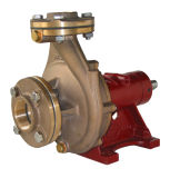End Suction Chemical &Water Pump With Bronze Impeller