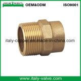 Customized Quality Bronze Nipple/Red Brass Nipple (AV-QT-1002)