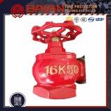 Indoor Fire Hydrant Manufacturer Dn50/Dn65