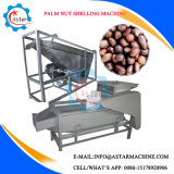Palm Nuts Cracking and Shelling Machine