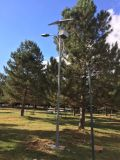 Solar Street Light and Solar Garden