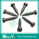 New Product Piercing Carbide Pilot Punch with Sharp Head