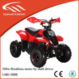 Adult Electric ATV for Sale with Ce Certification