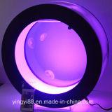 Custom Acrylic Fish Tank with LED Lighting