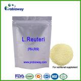 Lactobacillus Reuteri Probiotics Private Label Nutritional Supplement Nutraceuticals