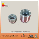 Permanent Sintered SmCo Magnetic Material