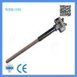 Shanghai Feilong B Type Mall-Sized Platinum-Rhodium Thermocouple