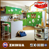 Flower Glossy Kitchen Cabinet Door (ZH-C879)