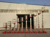 One Mast Aluminum Alloy Man Lift/Single Mast Aluminum Lift Working Platform