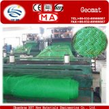 Protecting Vegetation Plastic Geomat to Fixed Water and Soil