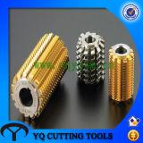 HSS M2 DIN3972 Gear Cutting Hobbing Cutter with PA20