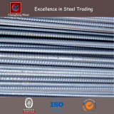 Fabricated Steel Rebar for Construction (CZ-A03)