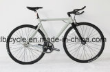 "700c Allumium Man City Bike Alloy ""S"" Cruve with Carbon Fork"