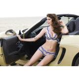 2 Colors Fashion Lingerie Comfortable Sexy Bra Ladies Underwear Set