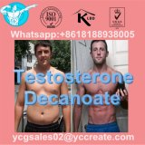 High Quality Testosterone Decanoate For Muscle Building CAS 5721-91-5