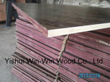625X2500X18mm Phenolic Film Faced Plywood/ Plywood/Formwork Plywood/Concerete Shuttering Plywood