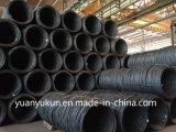Ex-Stock Factory/Mill Price China Origin Mild ASTM AISI Standard SAE 1006/1008/1010 Wire Coil 5.5mm