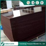 Black/Red/Brown Poplar/Birch/Hardwood Core Marine Plywood/Shuttering Plywood/Film Faced Plywood for Construction