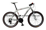 Low Price Alloy Mountain Bicycle MTB-036