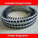 Black Phosphated Collated Drywall Screw (SW009)