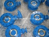 Manual Operation Ductile Iron Flange Butterfly Valve