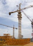 New Competitive Tower Crane (QTZ40 4808)