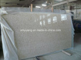 Chinese New Golden Slab for Bathroom Kitchen (YQC)