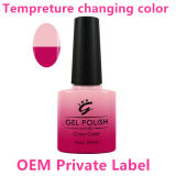 Private Label Color Changing Nail Art UV Gel Nail Polish