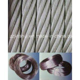 Electro Galvanized/Stainless Steel Wire/304 316 Stainless Steel