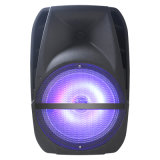 15inch Woofer Battery Speaker System Fs-19d