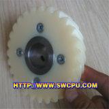 Customized Large Diameter Spur/Straight-Cut Gear