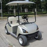 Customer Favorite 2 Seater Electric Golf Vehicle (DG-C2)