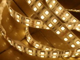 CE EMC LVD RoHS Two Years Warranty, Double Row SMD5050 LED Flexible Strip Light (WDSMD5050-120)