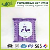 Skin Care Wet Wipes Personal Care Wet Tissues From China