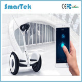 Smartek Bluetooth Nine Bot Mini 2 Wheel Electric Scooter Patinete Electrico No. 9 Smart Balance Wheel Hoverboard Car Magnesium LED Ninebot Scooter S-018