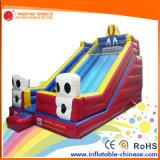 2017 Inflatable Super Slide for Kids