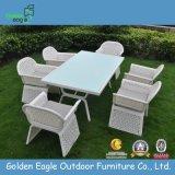 Special Weaved Rattan Modern Sofa Set (FP0231)