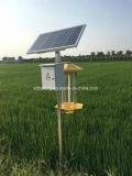 Hot Sales for Solar Insecticidal Lamp Solar Pest Killer Lamp Mosquito Killer Lamp