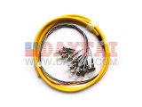 FC/Upc Sm 12 Core Fiber Optic Pigtail