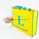 Reusable Foldable Cute Budget Gift PP Woven Fabric Shopping Bag