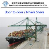 Ocean Full Container Shipment to India Nhava Sheva Port