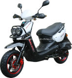 50cc EEC for Fashion Gasoline Scooter (SP50QT-10)