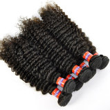Hot Sale Malaysian Kinky Curly Virgin Hair Extensions Sizes From 8′′ to 28′′