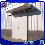 Large Span Beautiful Design Light Steel Structures for Warehouse