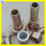12211-04-04 Bsp Male O-Ring Seal Hydraulic Hose Fitting