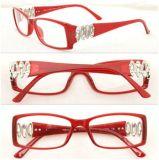 Fashion Women Eyeglasses / Brand Name Frame (BV 4019)