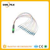 12 Cores MPO Sc Fanout Patch Cords