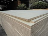 Bleached Poplar White Wood Plywood