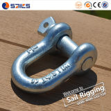 Screw Pin Chain Forged Galvanized G210 Shackle